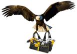 Montador de Móveis Ilha do Governador – RJ | 98742-4541