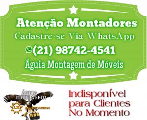 Montador de Móveis RS - Rio Grande do Sul
